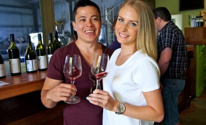 Wine Tasting Tour from Gold Coast